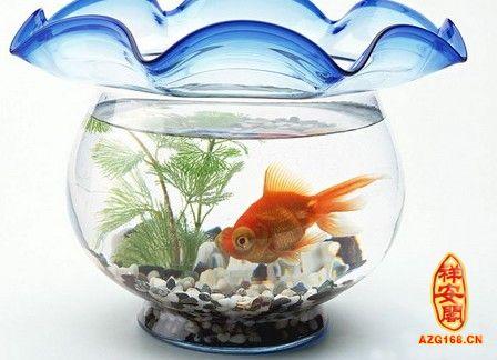 http://www.azg168.cn/jiajufengshui/2012-02-07/home48165.html